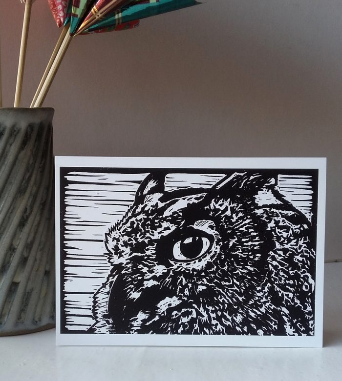 Oscar the Eagle Owl greetings card