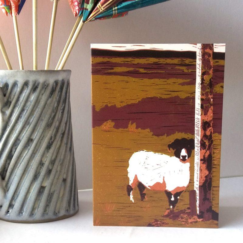 Sheep on Waskerley Moor greetings card